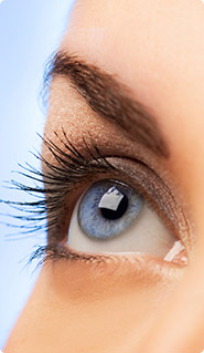 Exeter Laser Eye Surgeons - A-Z of Eyes